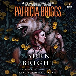 BURN BRIGHT AUDIO BOOK